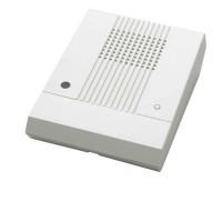 Remote Speaker